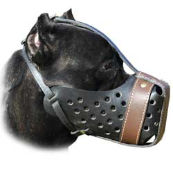 Easy to fit leather training muzzle