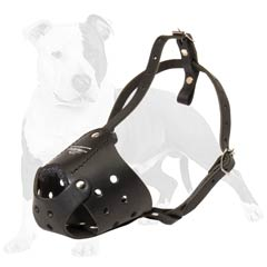 Leather muzzle for active dogs