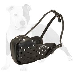 Easy dog training with this muzzle