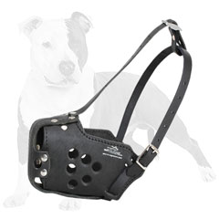 Comfy leather dog muzzle padded on nose