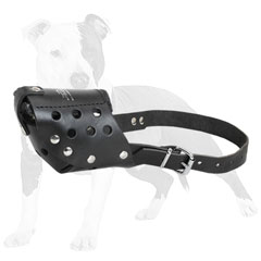 Perfectly aired leather dog muzzle for     daily use