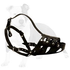 Perfect for training and daily walks muzzle