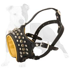 Royal looking leather muzzle for your dog's daily wearing