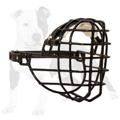 Wire basket muzle for active dogs