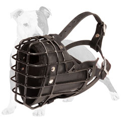Winter Dog Muzzle
