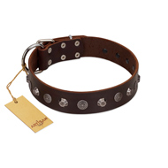 """Dark Chocolate"" Handmade FDT Artisan Brown Leather dog Collar with Studs"