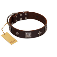 """Cold Star"" Designer FDT Artisan Brown Leather dog Collar with Silver-Like Adornments"