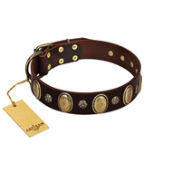 """Bronze Idol"" FDT Artisan Brown Leather dog Collar with Eye-catching Ovals and Small Studs"