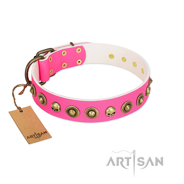 Impressive leather dog collar with strong decorations