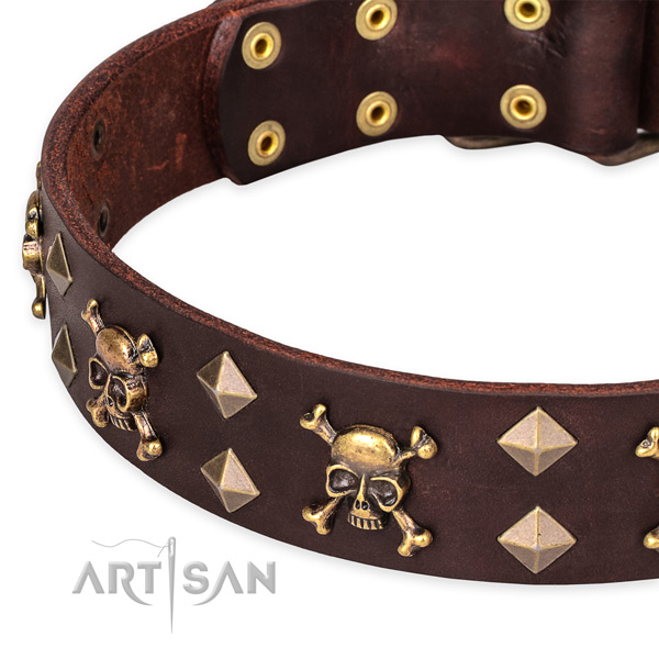 Daily use studded dog collar of high quality natural leather