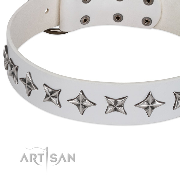 Daily use decorated dog collar of quality genuine leather