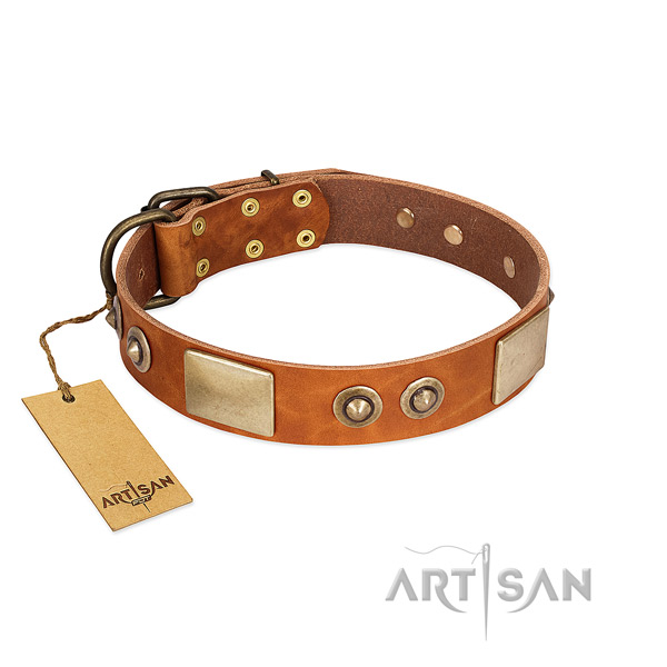 Easy adjustable full grain leather dog collar for basic training your canine