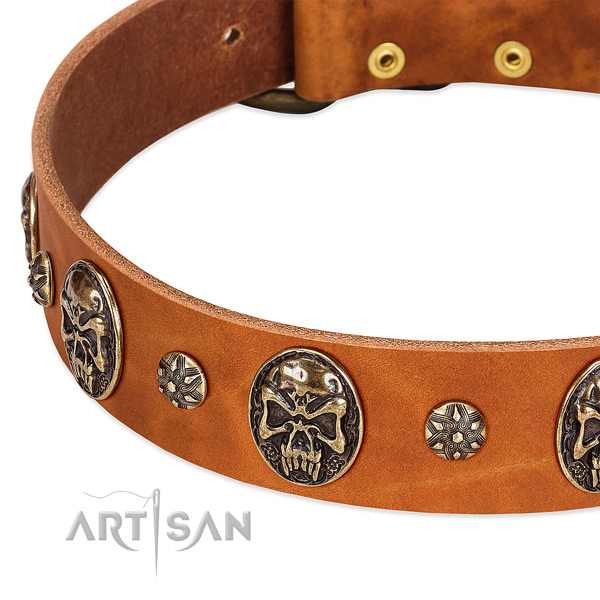 Durable buckle on natural genuine leather dog collar for your pet