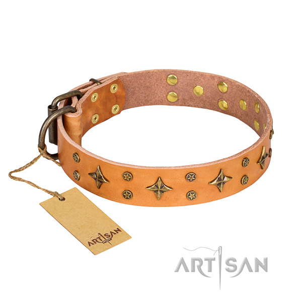 Stylish walking dog collar of best quality full grain natural leather with decorations