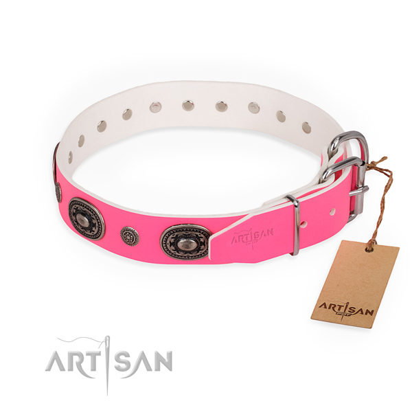 Stylish walking embellished dog collar with durable buckle