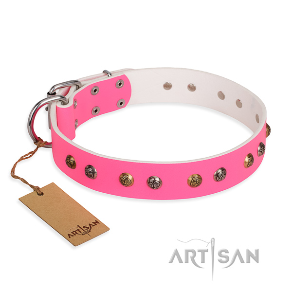 Everyday use decorated dog collar with reliable hardware