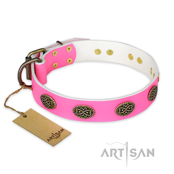Extraordinary leather dog collar for walking