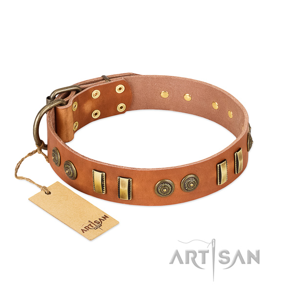 Corrosion proof D-ring on natural leather dog collar for your four-legged friend