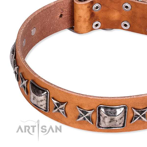 Everyday walking studded dog collar of best quality full grain genuine leather
