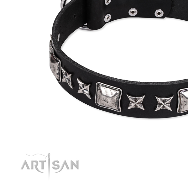 Comfy wearing embellished dog collar of reliable full grain leather