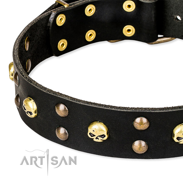 Stylish walking decorated dog collar of best quality full grain natural leather
