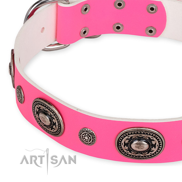 Natural genuine leather dog collar with stylish corrosion proof adornments