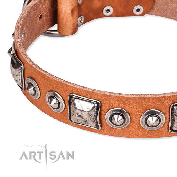 Top notch genuine leather dog collar crafted for your beautiful dog