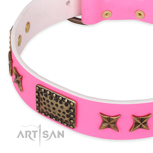 Leather collar with corrosion proof buckle for your attractive four-legged friend