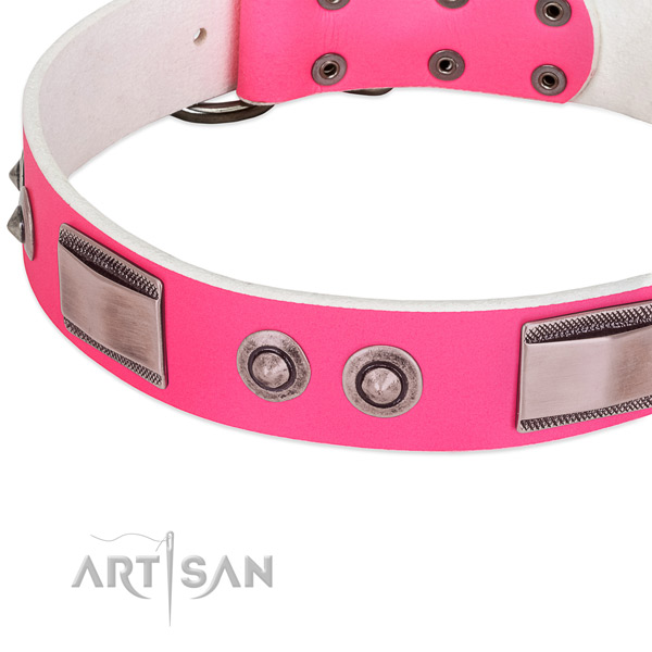 Easy to adjust genuine leather collar with embellishments for your pet