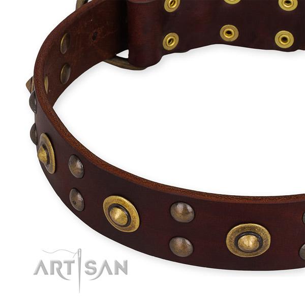 Leather collar with durable D-ring for your lovely dog