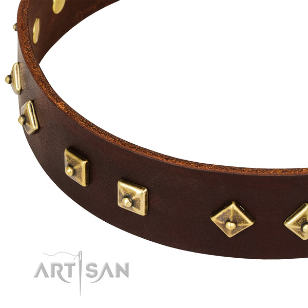 Trendy full grain natural leather collar for your stylish dog