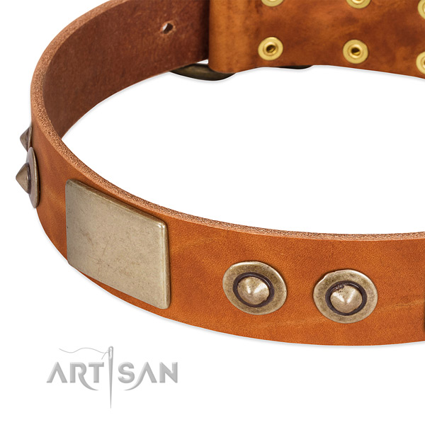 Rust resistant adornments on natural genuine leather dog collar for your canine