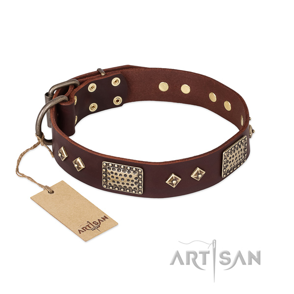 Incredible full grain leather dog collar for daily walking