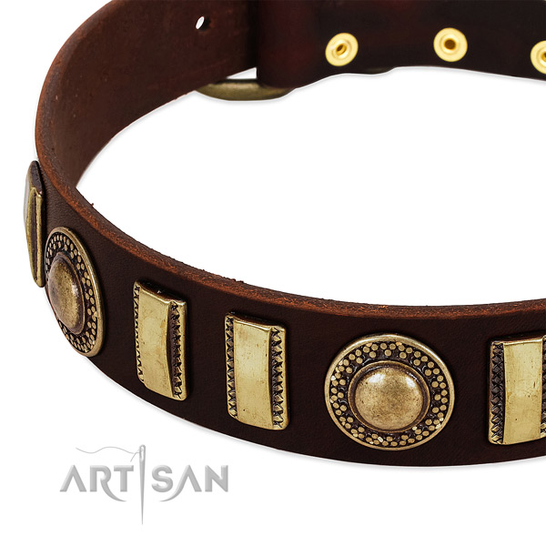 Durable natural leather dog collar with corrosion resistant fittings