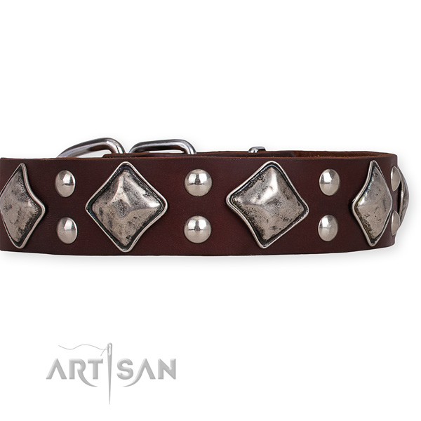Leather dog collar with significant reliable decorations