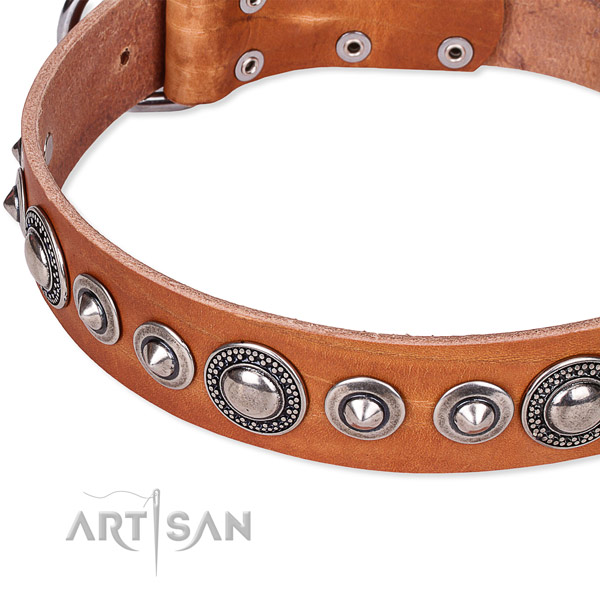 Fancy walking decorated dog collar of strong full grain genuine leather