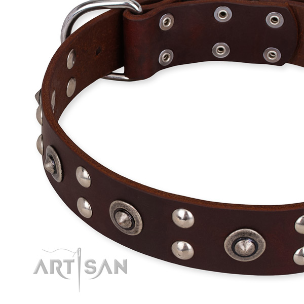 Full grain natural leather collar with rust resistant fittings for your beautiful dog