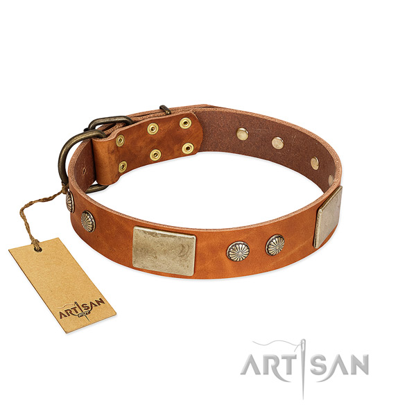 Easy to adjust full grain genuine leather dog collar for basic training your dog