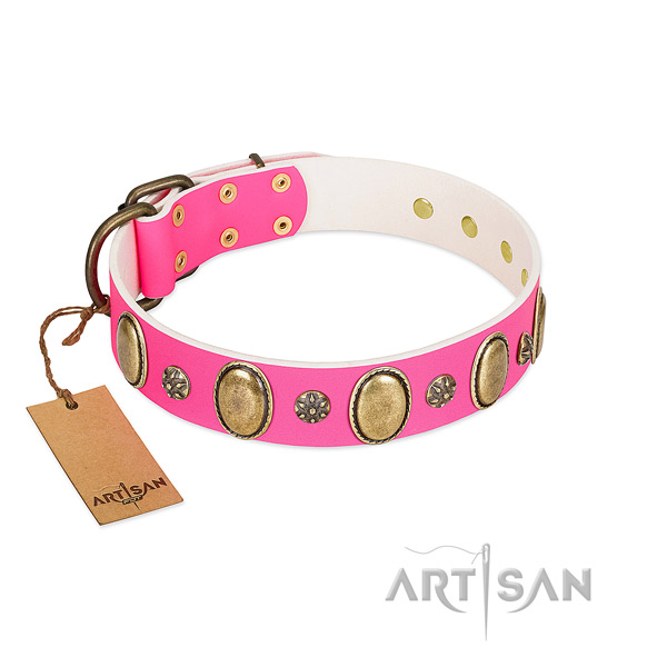 Soft to touch leather dog collar with rust resistant hardware