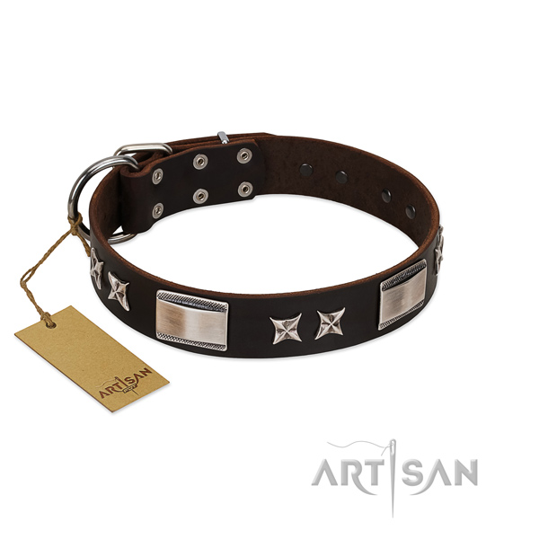Stylish design dog collar of natural leather