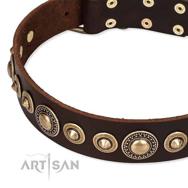 Reliable full grain genuine leather dog collar handcrafted for your beautiful canine