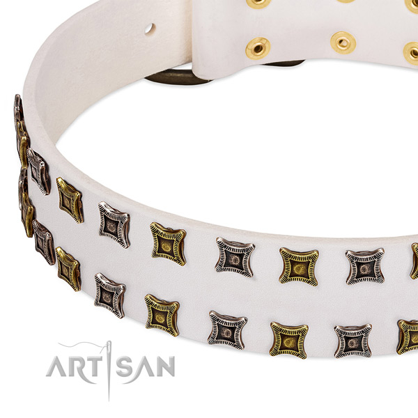 Natural leather dog collar with adornments for your stylish doggie