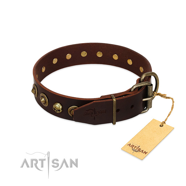 Full grain natural leather collar with trendy adornments for your canine