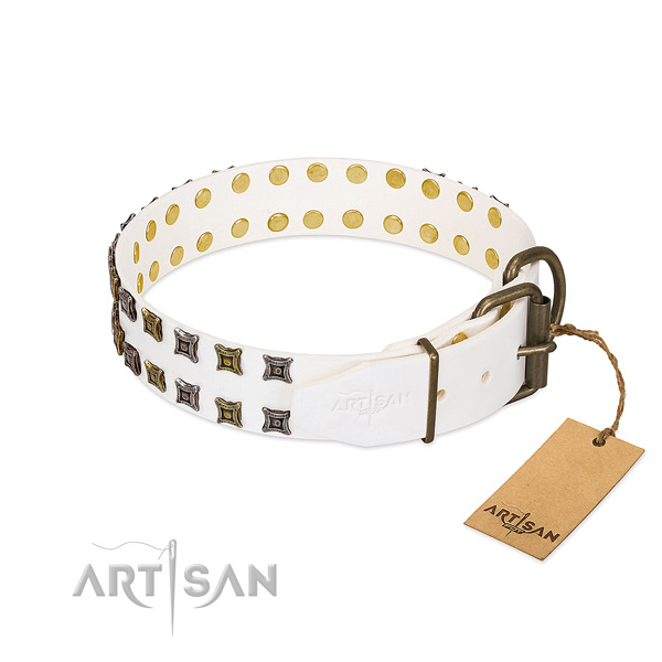 Genuine leather collar with inimitable studs for your four-legged friend
