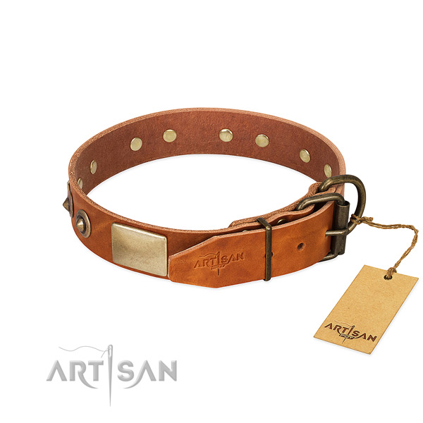 Strong traditional buckle on daily use dog collar