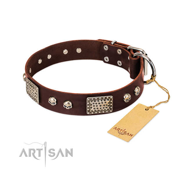 Easy wearing full grain natural leather dog collar for stylish walking your pet