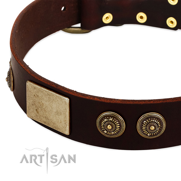 Corrosion proof buckle on full grain genuine leather dog collar for your canine