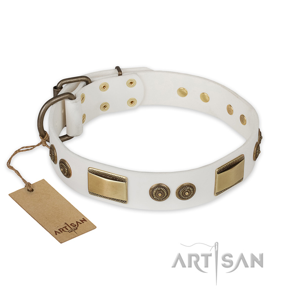 Significant leather dog collar for walking