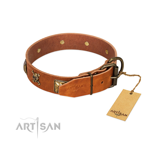 Unusual genuine leather dog collar with rust resistant decorations