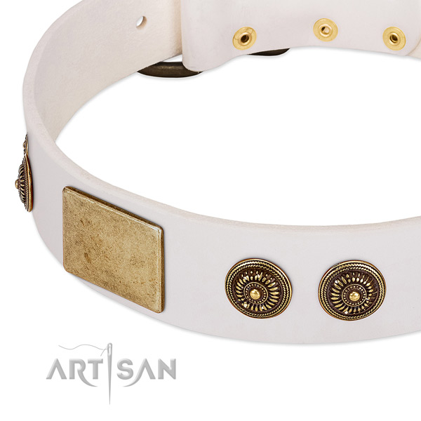 Inimitable dog collar crafted for your stylish doggie